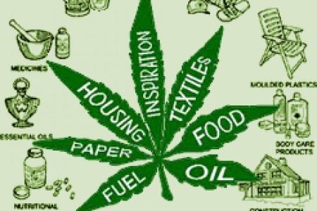 marijuana-uses_5125e36ada850_w450_h300